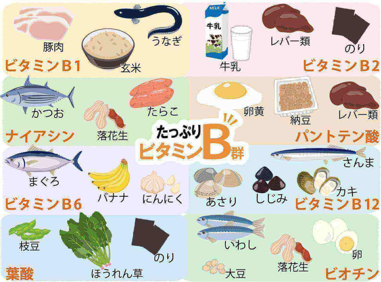 ビタミンB群ナイアシンアミド
